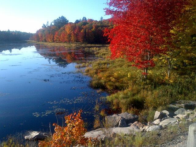 More of the Muskoka Beauty in October.