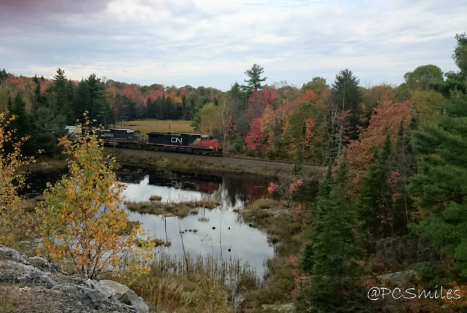 Beautiful fall scenery in Sequin Township, Muskoka, Ontario, Canada